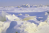 Путешествие к Северному полюсу на ледоколе
